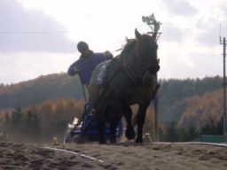 20011104-1.jpg