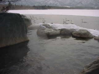 20030330-1.jpg