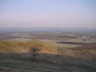 20040502-1.jpg