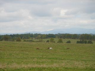 20041004-3.jpg