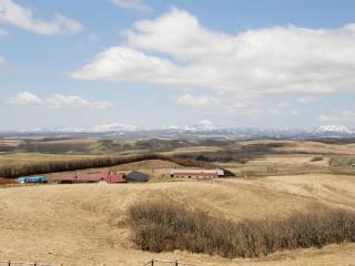 20070430-3.jpg