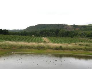 20070926-3.jpg