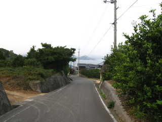 20071129-3.jpg