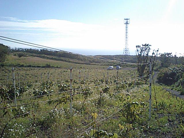 20080624-3.jpg