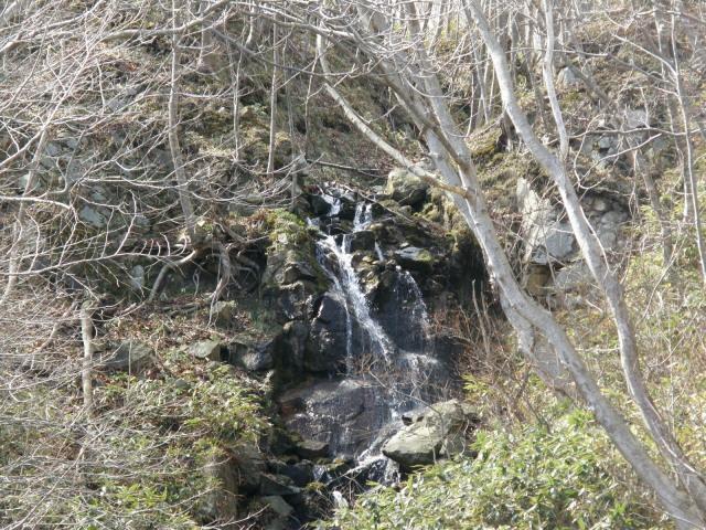 20090331-2.jpg